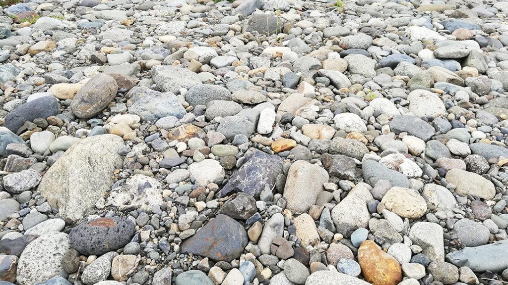 多摩川の川原 左下のごま塩おにぎり石が今更気になる