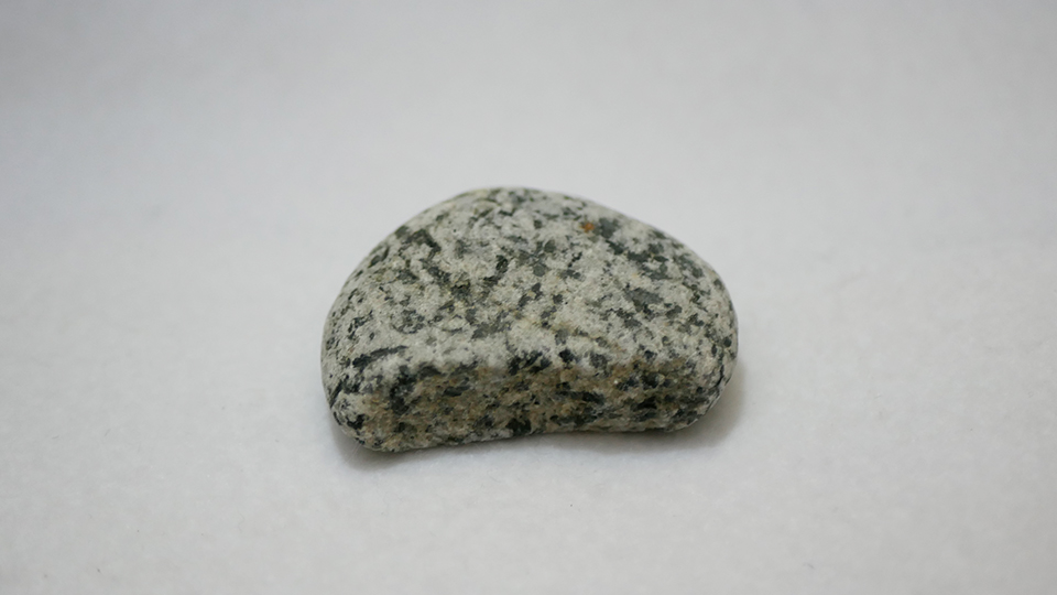 食べかけクッキーみたいな花崗閃緑岩