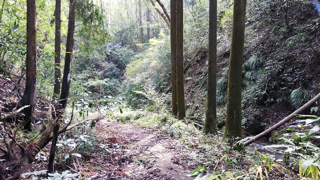 渋沢鉱山への道のり
