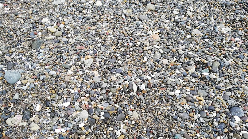 秋谷海岸の石ころ