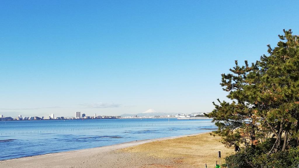 ふなばし三番瀬海浜公園から見える富士山