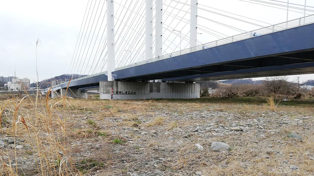 多摩川是政橋の下
