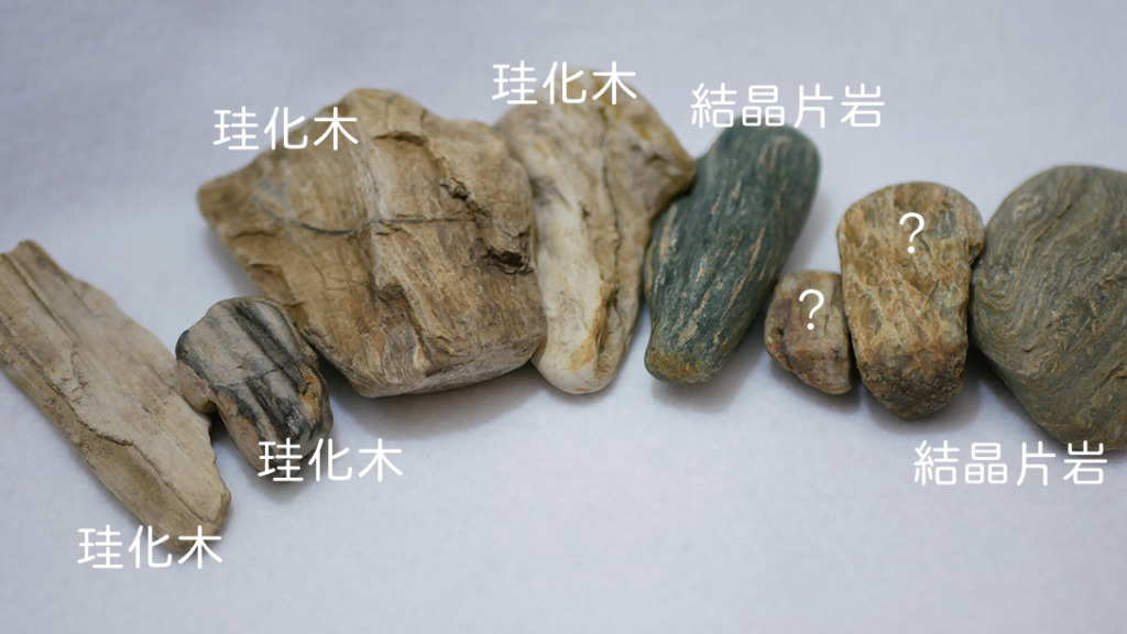 珪化木4・結晶片岩2