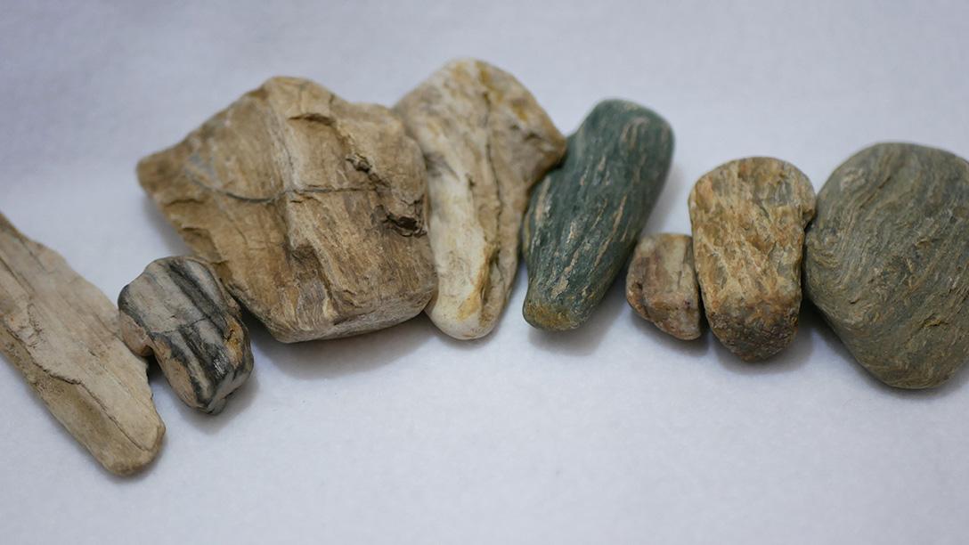 結晶片岩と珪化木はどこか似ている
