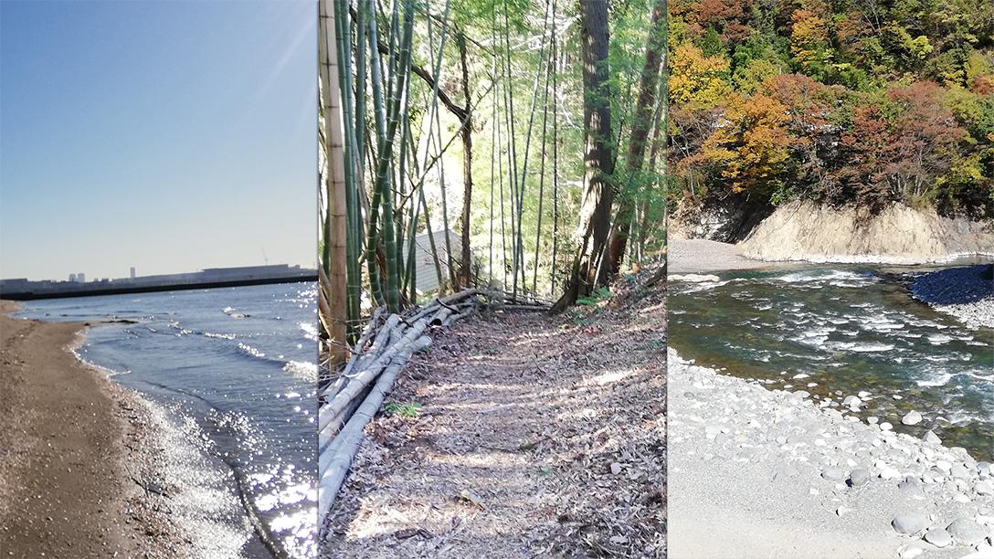 石拾いにおすすめなのは海・山・川のどれ?