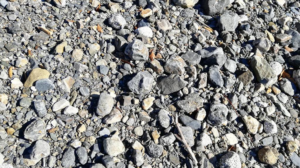 山梨県桂川の河原の石ころ