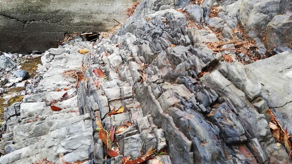 平井川上流の剥き出しの岩たち