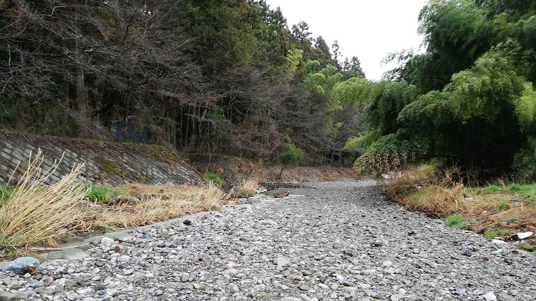 東京都平井川で石拾い